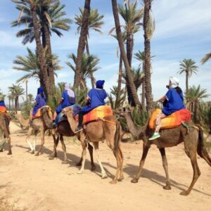 Deserto Di Agafay